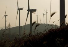 EIB supercharges Italy's wind power sector with €150m loan
