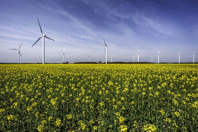 Onshore wind as affordable as any other source, claims report
