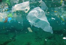 Plastic bag usage down 86% in England